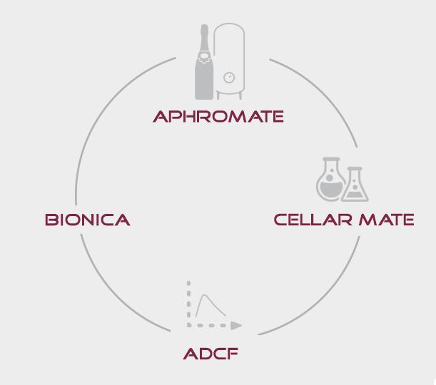 gestion_fermentacion_alcolica